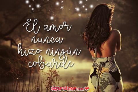Imágenes Con Frases De Amor Cobarde Para Mandar Una Indirecta