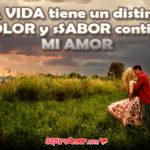 El amor hace de colores el día