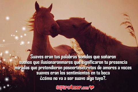 5 Imágenes de Amor para Facebook con Bonitos Poemas 2014 Pack 1