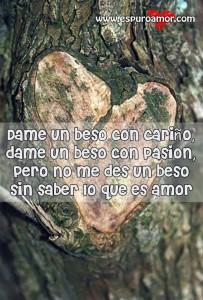 mensaje sobre un corazón tallado en árbol