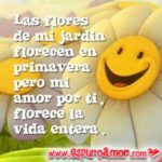 Flores para Dedicar con Lindas muestras de Amor