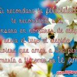 Flores blancas con lindas frases