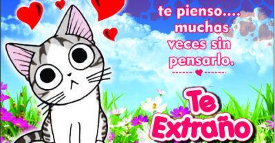Imágenes de Amor con Gatos de Te Extraño