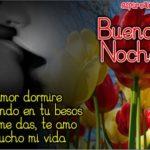 Imágenes de Tulipanes con Frases de Buenas Noches