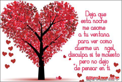 Árbol frondoso en forma de un bello corazón