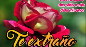Tarjetas de te extraño con rosas