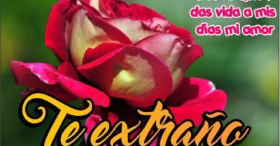 Imágenes de Rosas con la Frase Te Extraño para Descargar