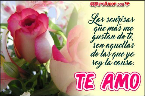 Rosas mágicas con eternas palabras de te amo