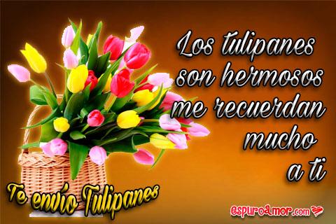 Hermoso arreglo floral de tulipanes de colores