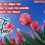 Imágenes de Amor con Flores para Enviar gratis