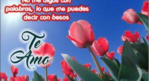 Flores para decir te amo