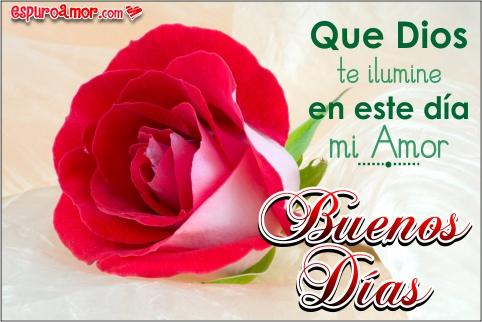 Bonitas Rosas con Frases de Amor para Dar los Buenos Días