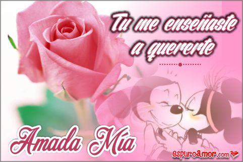Rosa rosada con foto de minies