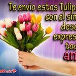 Imágenes de Amor para enviar Tulipanes gratis