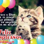Imágenes de Tiernos Gatitos con Feliz Cumpleaños