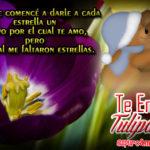 Abraza a tu Amorcito con Auténticos Detallitos muy Naturales y Tiernos