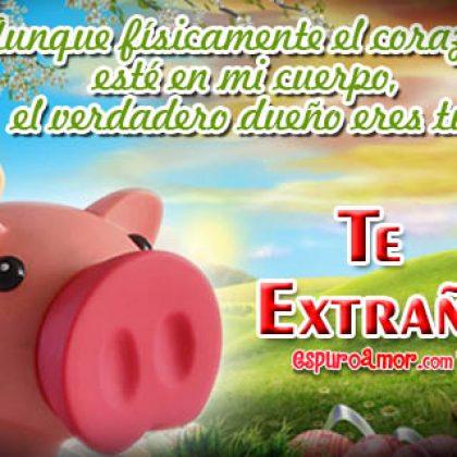 Frases de Te Extraño con Tiernos Chanchitos para Dedicar