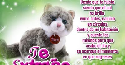 Frases de Te Extraño con Peluches de Gatitos para Enviar
