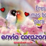 5 Frases de Te Envío Corazones con Hermosos Pajaritos Gratis