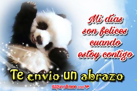 Osito panda feliz enviando abrazos