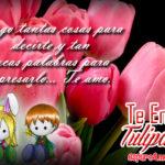 5 Imagenes de Bonitos Tulipanes Con Te Amo para Dedicar