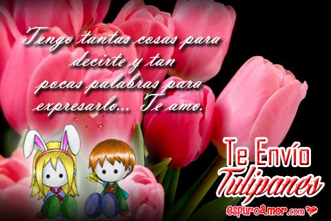 Imágenes de Bonitos Tulipanes Con Frases de Amor