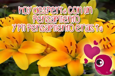 Hermosas flores de azucenas con tierno pajarito