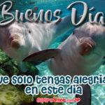 Imágenes de Amor de Buenos Días para Mi Novia Gratis