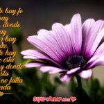Carteles de Flores Hermosas con Mensajes de Amor