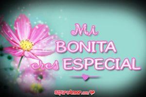 Imágenes de Amor con Ramos de Flores para Mi Novia